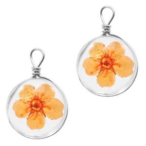 Hanger gedroogde bloem orange