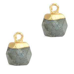 Natuursteen hanger hexagon fossil grey gold